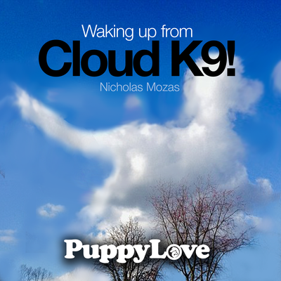 Waking up From Cloud K9!
