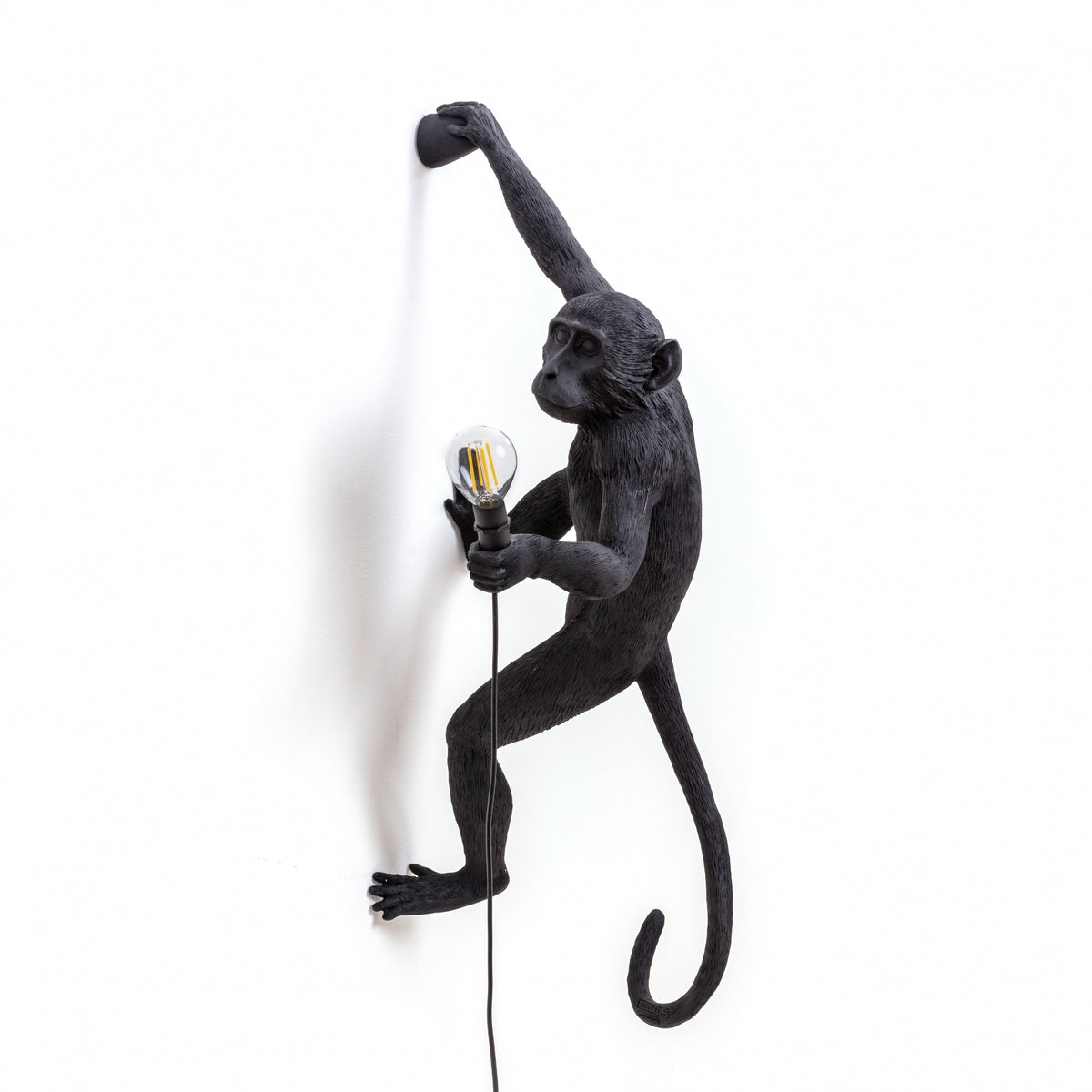 Climbing Monkey Light Right