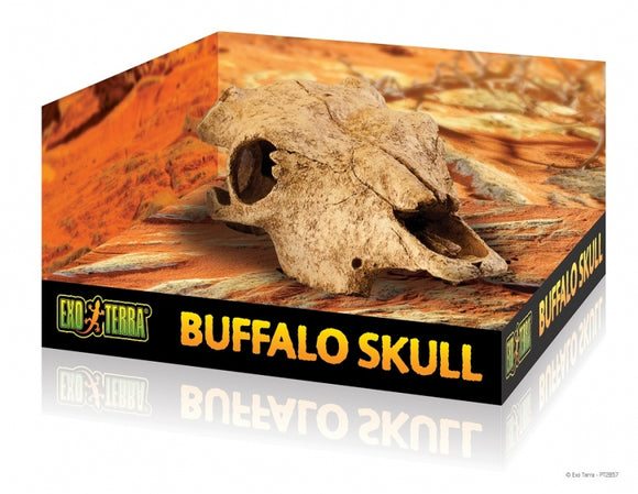 EXO TERA BUFFALO SKULL- MEDIUM
