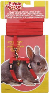 LIVING WORLD DWARF RABBIT HARNESS/LEAD SET - RED