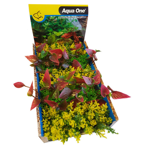 AQUAONE ECOSCAPE FOREGROUND CATSPAW Y/LILLY R MIX PUNNET MIX (1 PLANT)