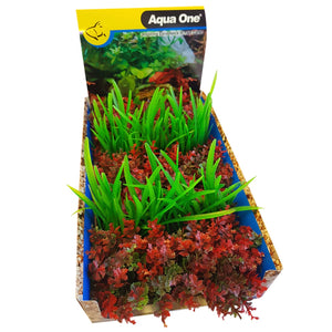 AQUAONE ECOSCAPE FOREGROUND CATSPAW R/LILAEOPISIS GN MIX PUNNET (1 PLANT)