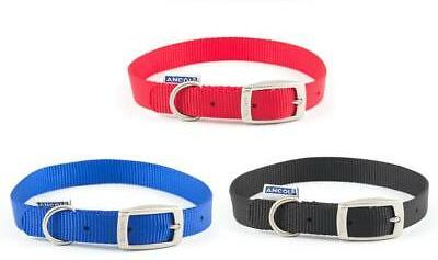 TK DOG COLLAR ASSORTED