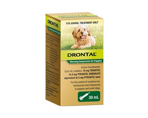 BAYER DRONTAL PUPPY SUSP 30ML