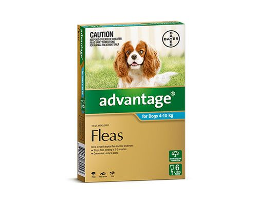 ADVANTAGE DOG 4-10KG 6PK TURQ