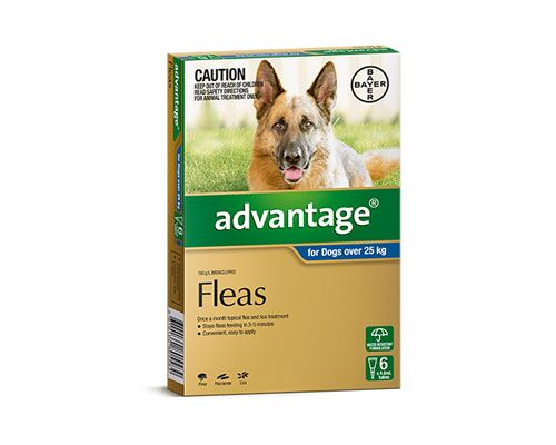 ADVANTAGE DOG 25KG + 6PK BLUE