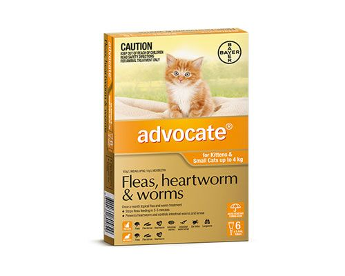 ADVOCATE CATS UNDER 4KG - 6 PACK