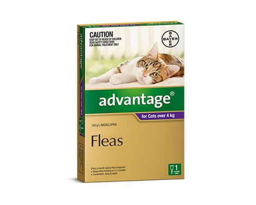 ADVANTAGE CAT OVER 4KG 1PK