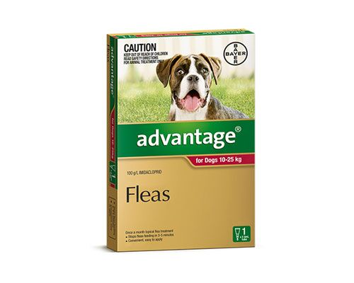 ADVANTAGE DOG 10-25KG 1PK