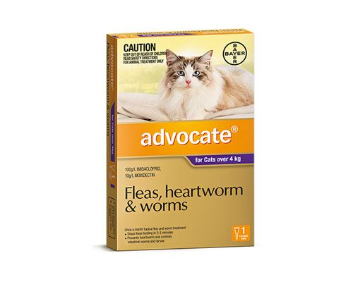 ADVOCATE CAT LARGE OVER 4KG 1PK