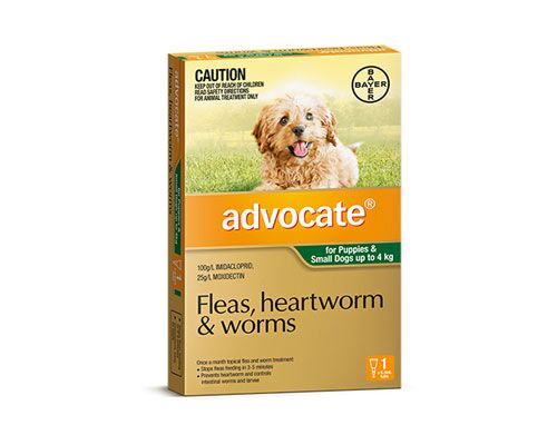 ADVOCATE DOG SML UP TO 4KG 1PK