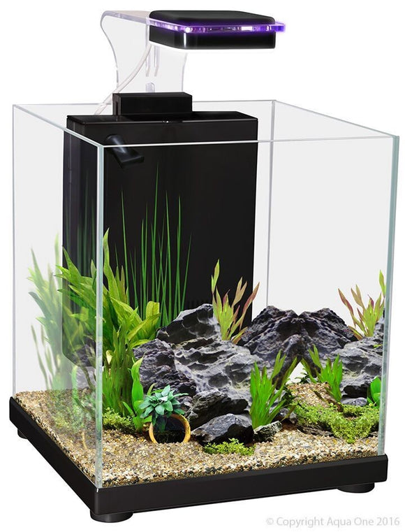 AQUA ONE BETTA SANCTUARY GLASS AQUARIUM 10L BLACK