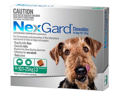 NEXGARD DOG CHEW 10.1-25KG GREEN 3PK