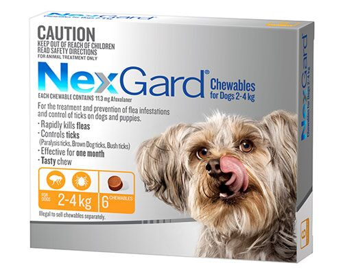 NEXGUARD DOG CHEW 2-4KG YELLOW 6PK
