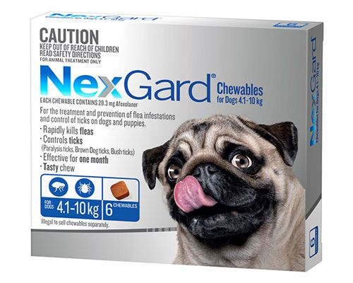 NEXGUARD DOG CHEW 4.1-10KG BLUE 6PK