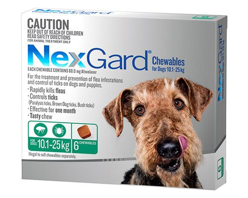 NEXGUARD DOG CHEW 10.1-25KG GREEN 6PK