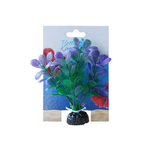 PLANT BETTA FLORA GREEN/PURPLE