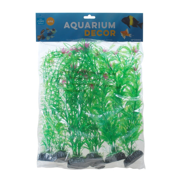 PLANT PACK GREEN COLOUR LARGE 6PK