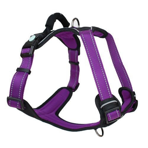 HARNESS HUSKIMO ULTIMATE AURORA M