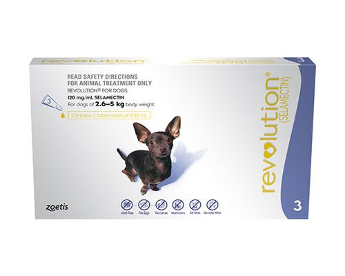 REVOLUTION PURPLE DOG 2.6-5KG 3PK