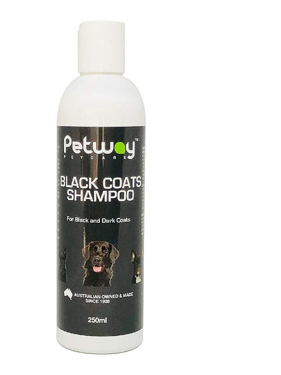BLACK COATS SHAMPOO 250ML