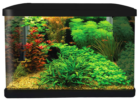 AQUA ONE LIFESTYLE 52 GLASS AQUARIUM 52L GLOSS BLACK