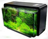 AQUASCENE NATURE 25 BLACK