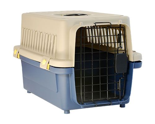 ALLPET LARGE PET CARRIER