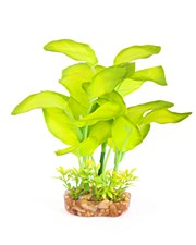 SILK PLANTS - BROADLEAF ASSORTED - MINI