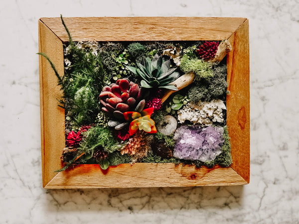 Framed Faux Succulent Wall Piece