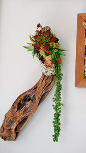 Driftwood & Faux Succulent Wall Piece