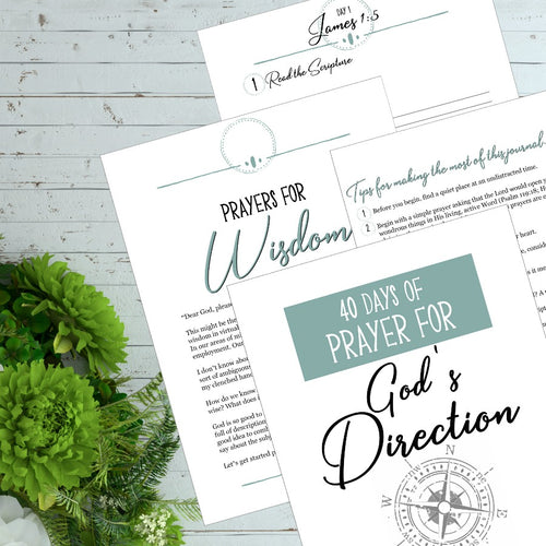 40 Days of Prayer for God's Direction Journal and Scripture Cards
