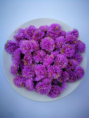 Loose Artificial Flowers - Lilac Loose Artificial Flowers