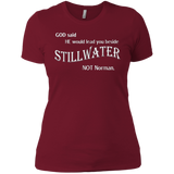 God Said HE would lead you beside STILLWATER NOT Norman Tee