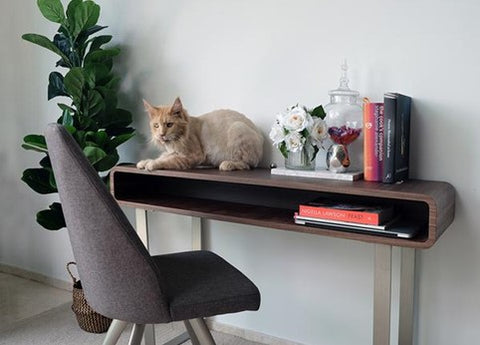 Seville TV console and Study Table