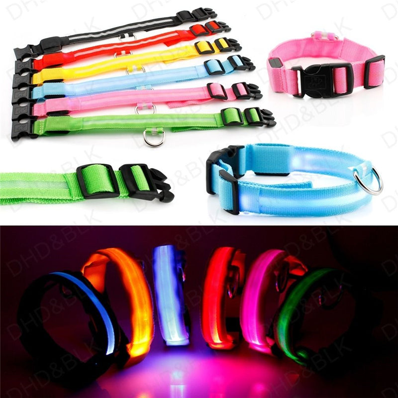 Luminous Flashing Light Leashes