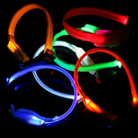 Nylon Light-up Flashing Leashes