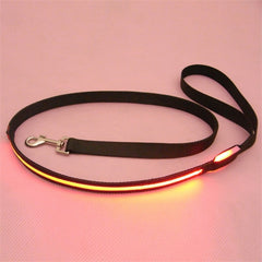 LED Leash Rope Belt