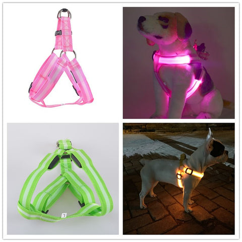 Rechargeable Luminous Dogg Harnesses