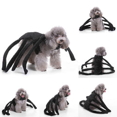 Spider Halloween Dog Costumes