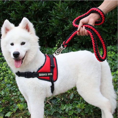 Soft Comfortable Dog Harnesses