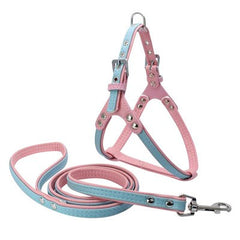Soft Strap Leather Harnesses