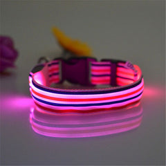 Adjustable LED Collars