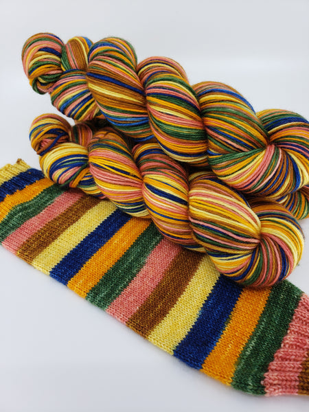 6 Enchanted Garden - Self-Striping - MS Sock 100
