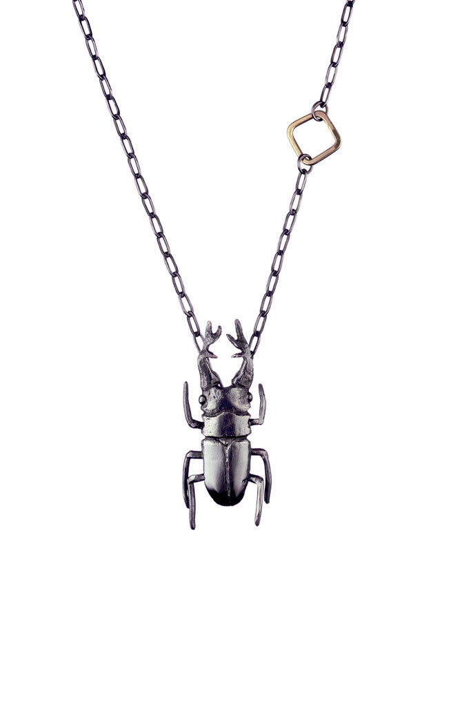 STAG HORN BEETLE