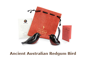 Ancient Australian Redgum Bird