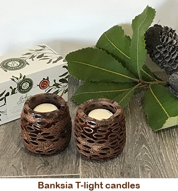 Banksia T-light candles