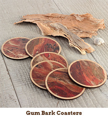 Photo of gum bark coasters