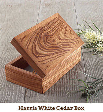 photo of harris white cedar box