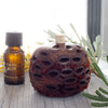 Banksia Scent Pot and Fragrant Oil